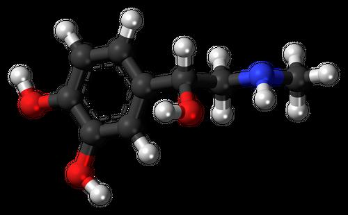 ホルモンについて|人体におけるホルモンの役割と作用機構